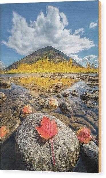 Bold Fall Colors // Flathead River, Glacier National Park  Wood Print
