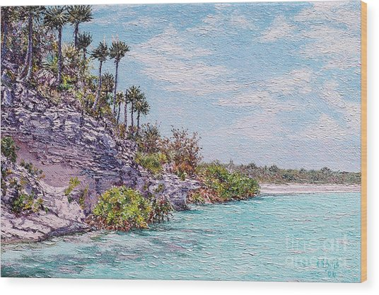 Bonefish Creek Wood Print