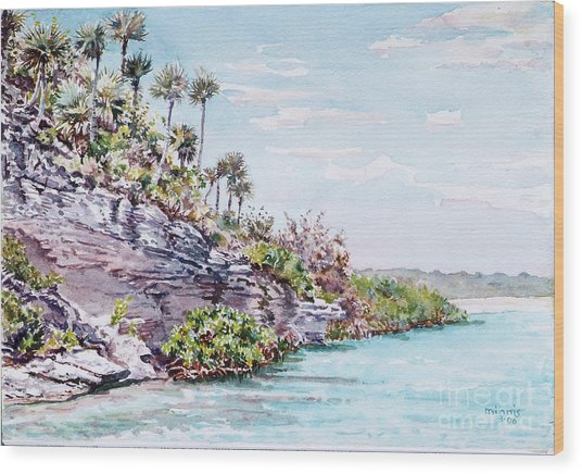 Bonefish Creek Watercolour Study Wood Print