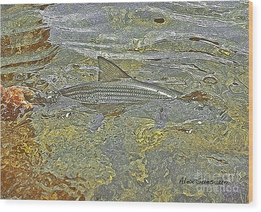 Bonefish Release Wood Print