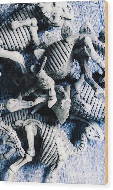 Bones From A Mass Extinction Event Wood Print
