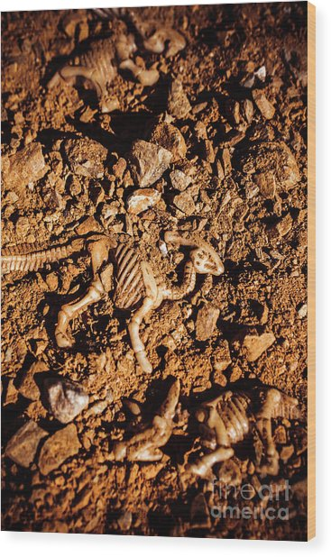Bones From Ancient Times Wood Print