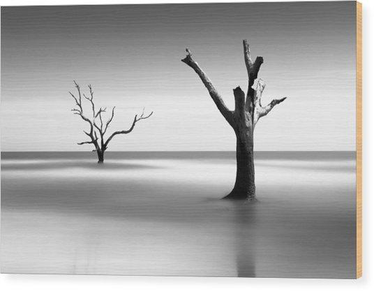 Boneyard Beach V Wood Print