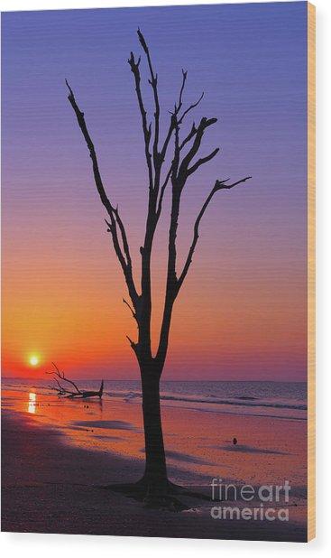 Boneyard Wood Print by Steven Dillon