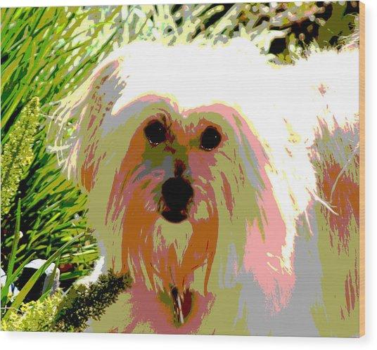 Bonnie In Color Wood Print by Ellen Lerner ODonnell