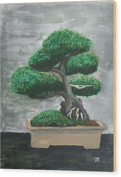 Bonsai #2 Wood Print