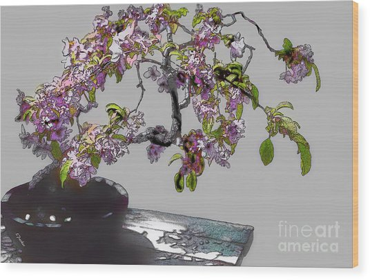 Bonsai Beauty Wood Print by Linda  Parker