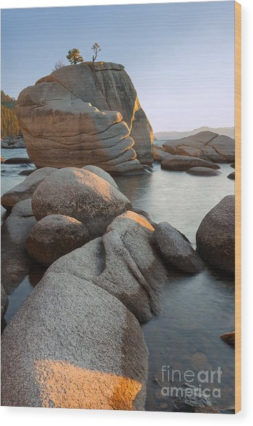 Lake Tahoe - Bonsai Rock Wood Print