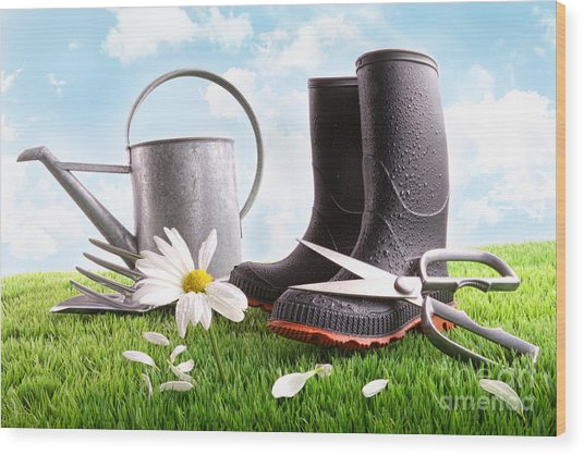 Boots With Watering Can And Daisy In Grass  Wood Print