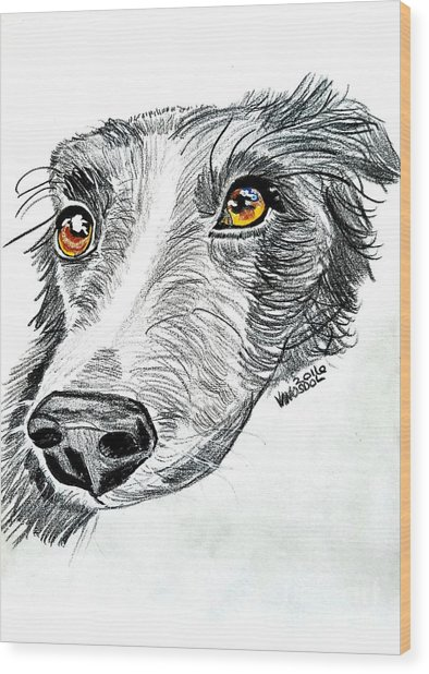 Border Collie Dog Colored Pencil Wood Print