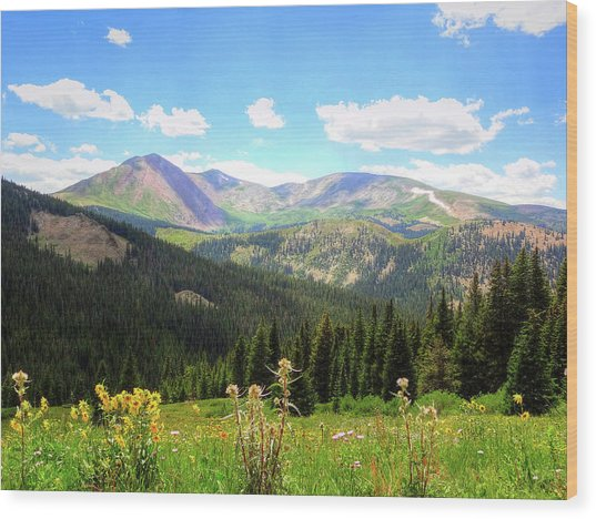 Boreas Pass Colorado Wood Print