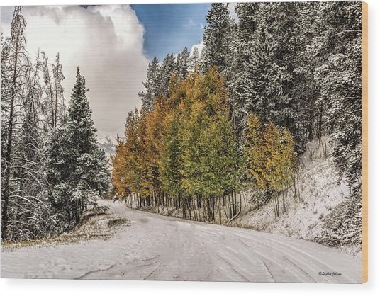 Boreas Pass Road Aspen And Snow Wood Print