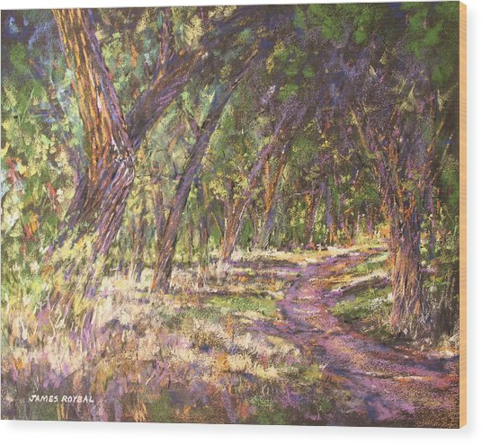 Bosque Light Wood Print by James Roybal