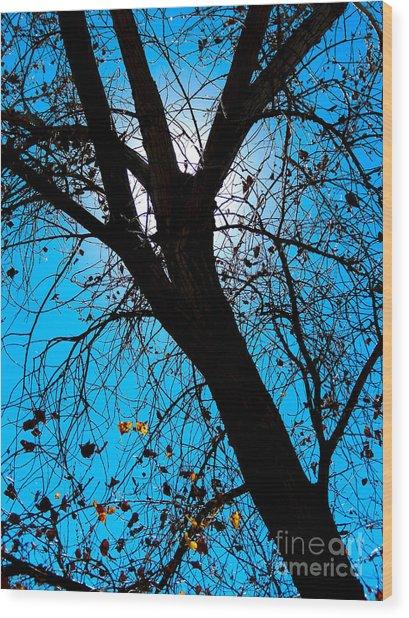 Bosque Silhouette Wood Print