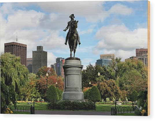 Boston Common Wood Print