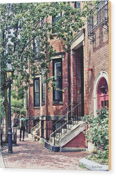 Boston Ma - Walking The Dog On Mount Vernon Street Wood Print