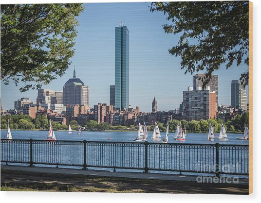 Boston Skyline Charles River Sailboats Photo Wood Print
