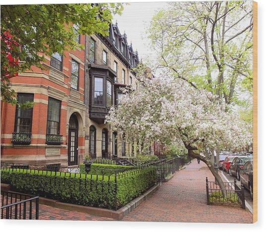 Boston Spring Wood Print