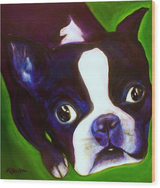 Boston Terrier - Elwood Wood Print