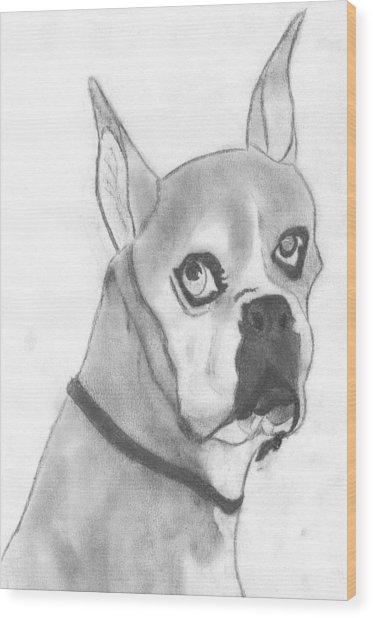 Boston Terrier Wood Print by Josh Bennett