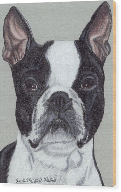 Boston Terrier Vignette Wood Print