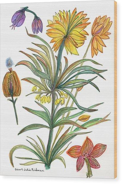 Botanical Flower-53  Yellow Flower Wood Print by Julie Richman