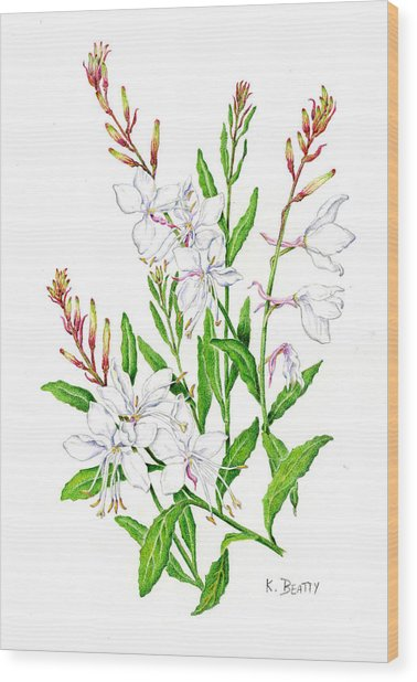 Botanical Illustration Floral Painting Wood Print