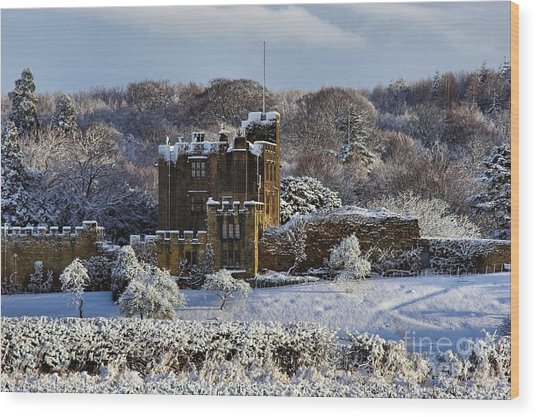 Bothal Castle In Winter Wood Print by Les Bell