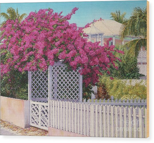 Bougainvillea Crown Wood Print