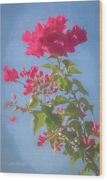 Bougainvillea Morning Wood Print