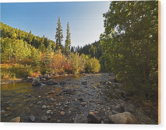 Boulder Colorado Canyon Creek Fall Foliage Wood Print