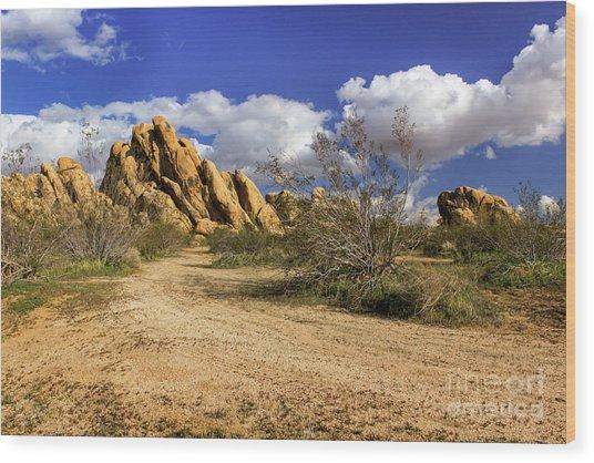 Boulders At Apple Valley Wood Print