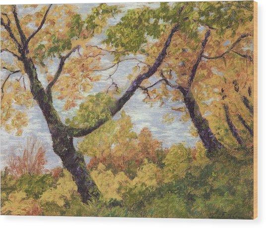 Boulevard Park Wood Print by Susan Ernst Corser