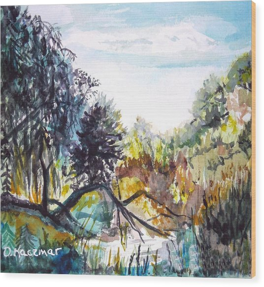 Bouquet Canyon Wash 1 Wood Print by Olga Kaczmar