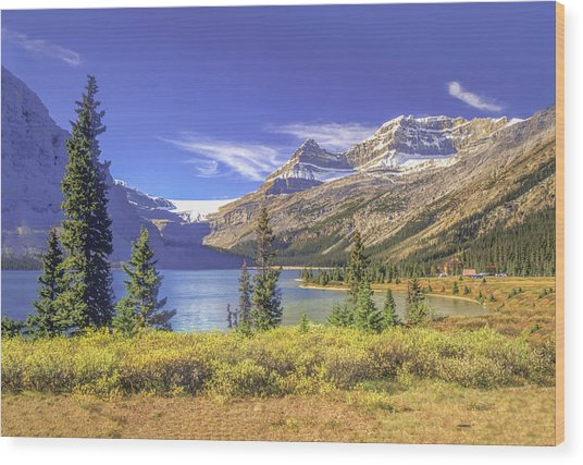 Wood Print featuring the photograph Bow Lake 2005 01 by Jim Dollar