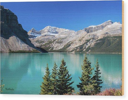 Bow Lake Wood Print