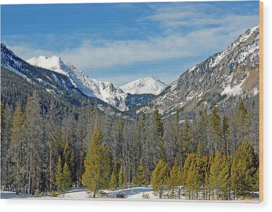 Bowen Mountain In Winter Wood Print