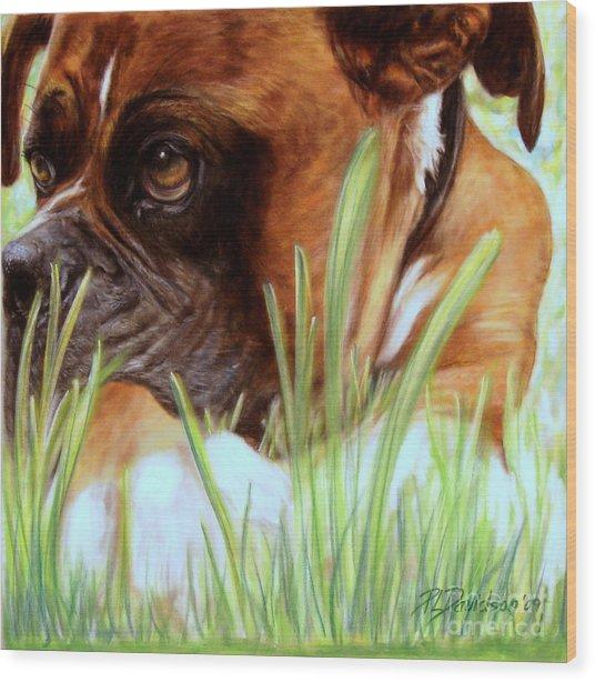 Boxer  Wood Print