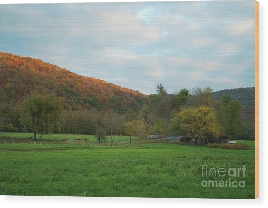 Boxley Valley Arkansas Wood Print