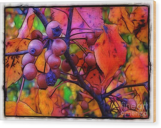 Bradford Pear In Autumn Wood Print