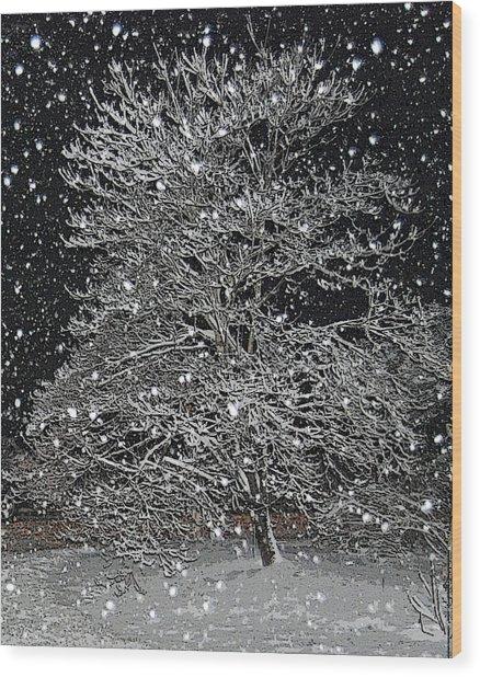 Bradford Pear Wood Print by Patricia Motley
