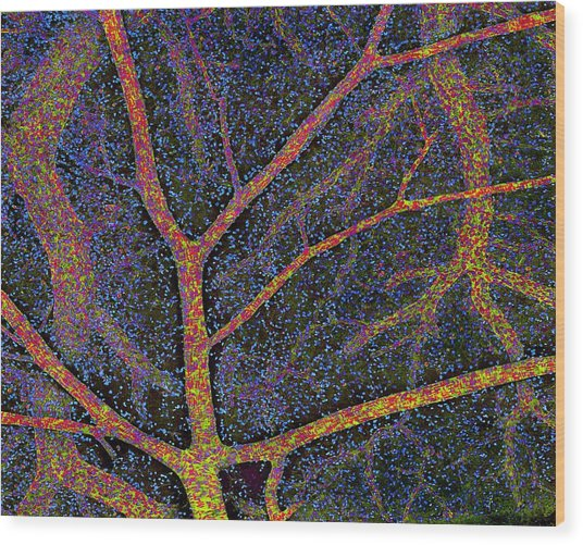 Brain Tissue Blood Supply Wood Print by Thomas Deerinck, Ncmir
