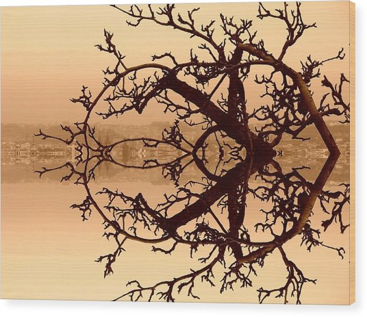 Branches In Suspension Wood Print