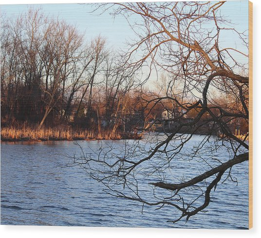 Branches Over Water Wood Print