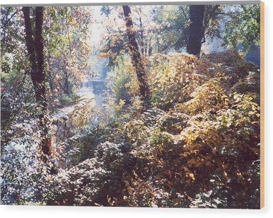 Brandywine Foliage Wood Print