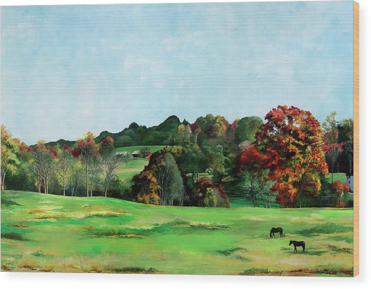 Beaver Valley Wood Print