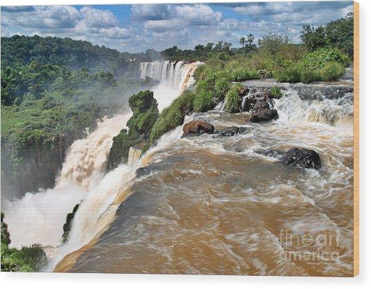 Wood Print featuring the photograph Brazil,iguazu Falls, by Juergen Held