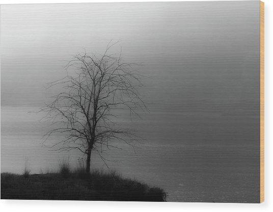 Break Through Wood Print