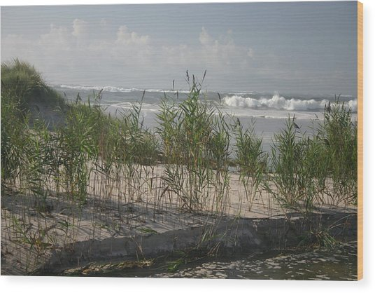 Breaking Calm Wood Print by Dennis Curry