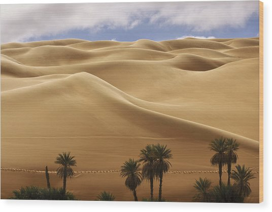 Breathtaking Sand Dunes Wood Print